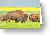 Drumheller Greeting Cards - This is Alberta 3 Greeting Card by Paul W Sharpe Aka Wizard of Wonders