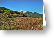 Devastation Greeting Cards - This is British Columbia No.45 - The BC they do not want you to see Greeting Card by Paul W Sharpe Aka Wizard of Wonders