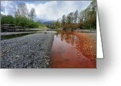 Vedder Greeting Cards - This is British Columbia No.46 - Chilliwacks Rusty River Greeting Card by Paul W Sharpe Aka Wizard of Wonders