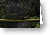 Northshore Greeting Cards - This is British Columbia No.64 - Squrriel Bridge Over Cypress Fa Greeting Card by Paul W Sharpe Aka Wizard of Wonders