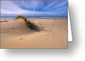 Oregon Wildlife Digital Art Greeting Cards - This is Oregon State 5  - Jettys Rippling Sand Dunes Greeting Card by Paul W Sharpe Aka Wizard of Wonders