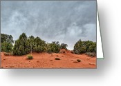 Grey Clouds Greeting Cards - This is Utah No. 7 - Canyonland Sands Greeting Card by Paul W Sharpe Aka Wizard of Wonders