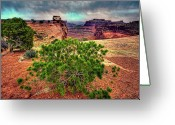 Grey Clouds Greeting Cards - This is Utah No. 8 - Canyonland Roots Greeting Card by Paul W Sharpe Aka Wizard of Wonders