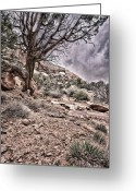 Grey Clouds Greeting Cards - This is Utah No. 9 - Morning at Williams Arch Greeting Card by Paul W Sharpe Aka Wizard of Wonders