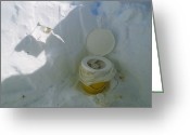 Toilet Paper Greeting Cards - This Toilet Is Used To Export Human Greeting Card by Gordon Wiltsie