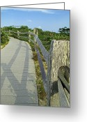 Cedar Fence Greeting Cards - This Way to the Beach Greeting Card by Barbara McDevitt