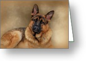 Alsatian Greeting Cards - Those Eyes Greeting Card by Sandy Keeton