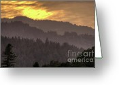 Fall Photographs Greeting Cards - Thoughts 1 Greeting Card by Mars Lasar