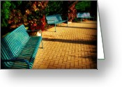 Park Benches Greeting Cards - Three Benches Greeting Card by Perry Webster