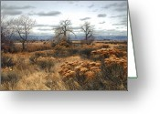 Fineart Canvas          Greeting Cards - Three Brothers Greeting Card by James Steele