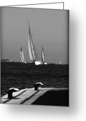 Sailing Fast Greeting Cards - Three Greeting Card by Pedro Cardona
