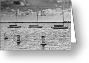 Jensen Beach Greeting Cards - Three Sailboats Greeting Card by Patrick M Lynch