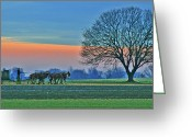 Amish Greeting Cards - Through The Fields Greeting Card by Scott Mahon