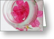 Through The Looking Glass Greeting Cards - Through the looking glass Greeting Card by Amanda Barcon