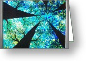 Cities Glass Art Greeting Cards - Through the Trees Greeting Card by Desiree Soule