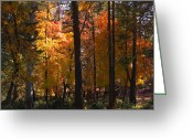 The Start Greeting Cards - Through the Woods to Grandmothers House Greeting Card by Saija  Lehtonen