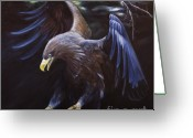 Yellow Beak Painting Greeting Cards - Thunder Greeting Card by Julie Bond
