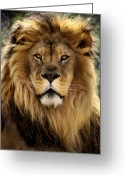 Majestic Greeting Cards - Thy Kingdom Come Greeting Card by Linda Mishler