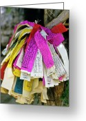 Tibetan Buddhism Greeting Cards - Tibetan Prayer Flags Greeting Card by Michele Burgess