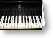 Steinway  Greeting Cards - Tickling the Ivories Greeting Card by Colleen Kammerer
