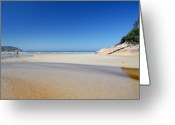 Tidal River Greeting Cards - Tidal River Beach Greeting Card by Robert Lacy
