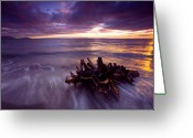 Ocean Beach Greeting Cards - Tide Driven Greeting Card by Mike  Dawson