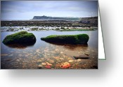 Seaview Greeting Cards - Tide Out Greeting Card by Svetlana Sewell