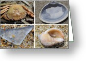 Kid Photo Greeting Cards - Tideline Treasures Greeting Card by Luke Moore