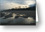 Puddle Greeting Cards - Tidepools at dawn Greeting Card by Idaho Scenic Images Linda Lantzy