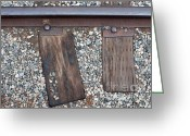 Earth Tone Greeting Cards - Ties Greeting Card by Dan Holm