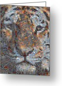 Grid Of Heart Photos Digital Art Greeting Cards - Tiger Greeting Card by Boy Sees Hearts