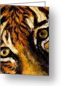 West Pastels Greeting Cards - Tiger by Rashmi Rao Greeting Card by Rashmi Rao