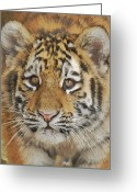 Tiger Cub Greeting Cards - Tiger Cub 2 Greeting Card by Ernie Echols