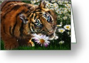 Tiger Cub Greeting Cards - Tiger Flowers Greeting Card by Julie L Hoddinott