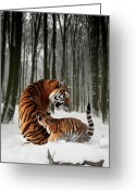 Tiger Cub Greeting Cards - Tiger Mother with cub Greeting Card by Julie L Hoddinott