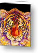 Tiger Cub Greeting Cards - Tiger Greeting Card by Stephen Anderson