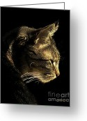 Cat Profile Greeting Cards - Tiger Within Greeting Card by Dale   Ford