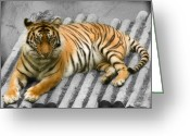 Paws Digital Art Greeting Cards - Tigers look Greeting Card by Svetlana Sewell