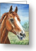 Equine Watercolor Portrait Greeting Cards - Tigger Greeting Card by Kristine Plum