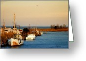 Bill Cannon Photography Greeting Cards - Tilghman Island Maryland Greeting Card by Bill Cannon