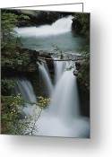 Johnston Greeting Cards - Time Exposure Of Johnston Creek Greeting Card by Raymond Gehman