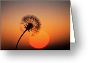 "\""sunset Photography\\\"" Greeting Cards - Time Teller Greeting Card by Peter Chadwick LRPS"