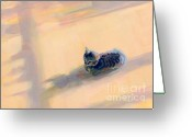 Gray Tabby Greeting Cards - Tiny Kitten Big Dreams Greeting Card by Kimberly Santini