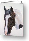 White White Horse Pastels Greeting Cards - Tippy Greeting Card by Lucy Deane