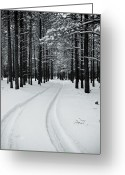 Winter Trees Greeting Cards - Tire Tracks in Snow Greeting Card by Scott Sawyer