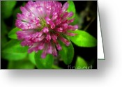 Little Girls Greeting Cards - To Remember Clover Greeting Card by Karen Wiles