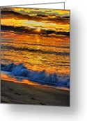 Atlantic Beaches Greeting Cards - To Splash Greeting Card by Emily Stauring