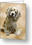 Cocker Spaniel Greeting Cards - Toby Greeting Card by Barbara Hymer