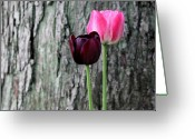 Flowers Photographs Greeting Cards - Together Greeting Card by Deborah  Crew-Johnson