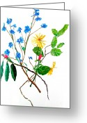 Nature Study Painting Greeting Cards - Together We are Beautiful Greeting Card by Beth Saffer